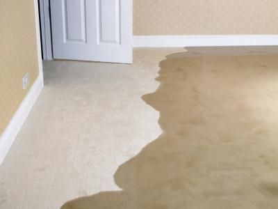 diy carpet cleaning disaster - carpet soaked with water